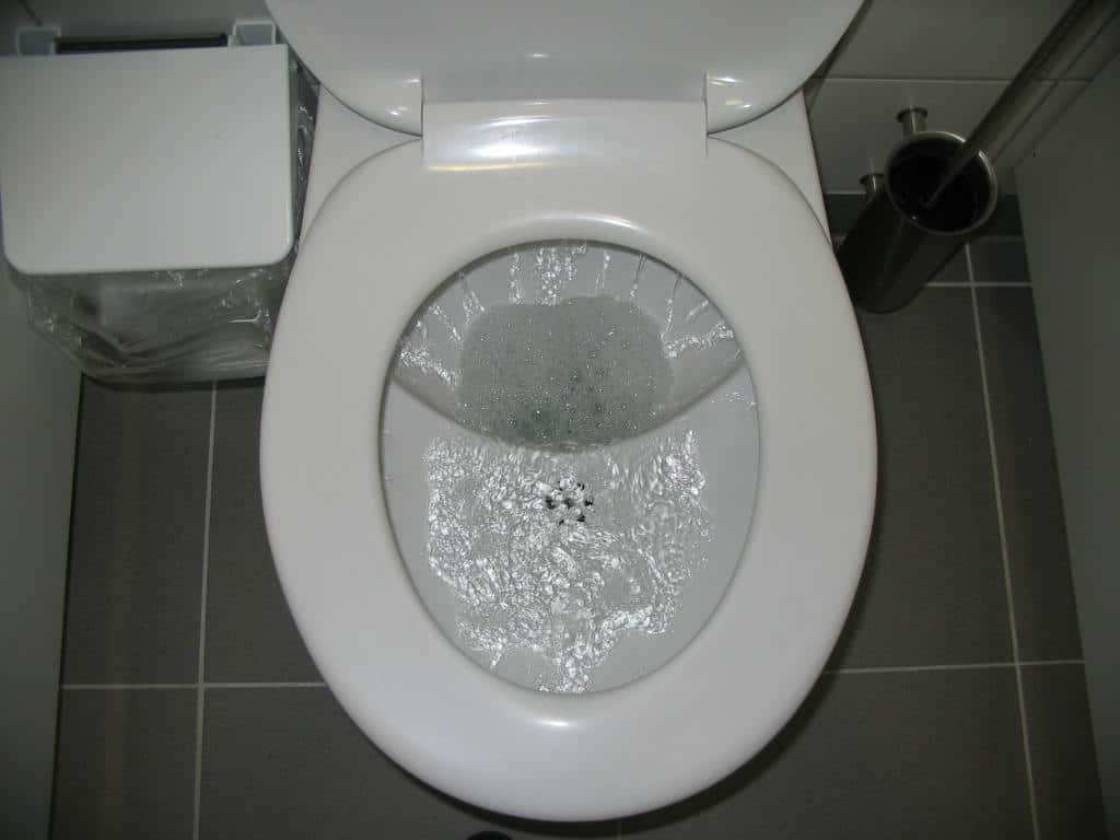 toilet-wont-flush